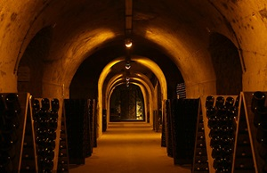 GASTRONOMIE - Caves Taittinger, Reims